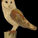 "Barn Owl intarsia, 2016. 7.5"" x 9.5"" 76 pieces. Aspen, Birch, Alder, Spalted Maple, Zebrawood, Olivewod, Chakta Viga, Orangewood, Black Limba, Ebony, Canarywood, Mahogany"
